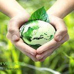 Chính sách về thuế tài nguyên & phí bảo vệ môi trường trong khai thác khoáng sản
