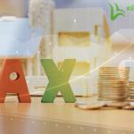 Hướng dẫn cách cân đối thuế đầu vào - đầu ra trong doanh nghiệp