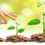 Quy định & Thủ tục về hoàn thuế GTGT dự án đầu tư của doanh nghiệp
