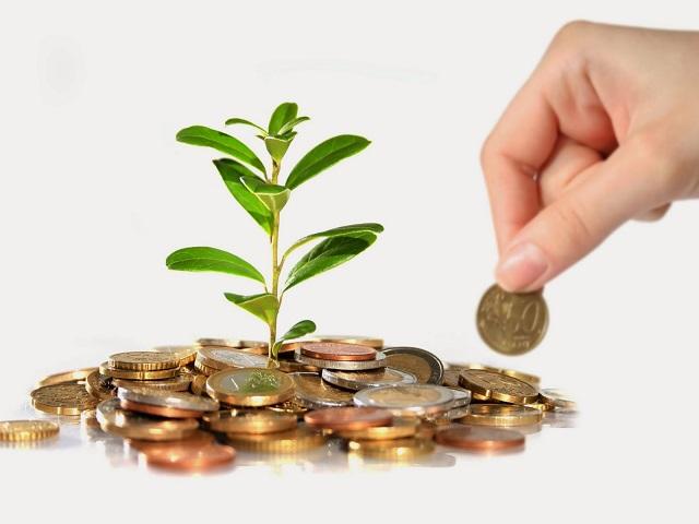 Sổ theo dõi chi tiết vốn góp của chủ sở hữu bao gồm những gì?